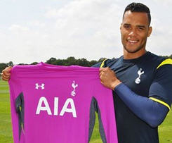 Tottenham have confirmed the signing of Michel Vorm from Swansea City.