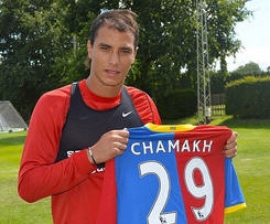 Crystal Palace have completed the signing of Arsenal striker Marouane Chamakh.