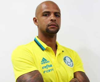 Brazil international Felipe Melo has left Inter Milan to join Brasileirao champions Palmeiras on a three-year deal.