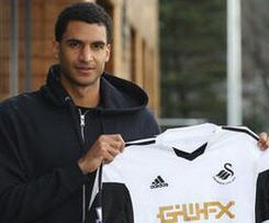 Swansea City have signed Bolton striker David Ngog for an undisclosed fee.